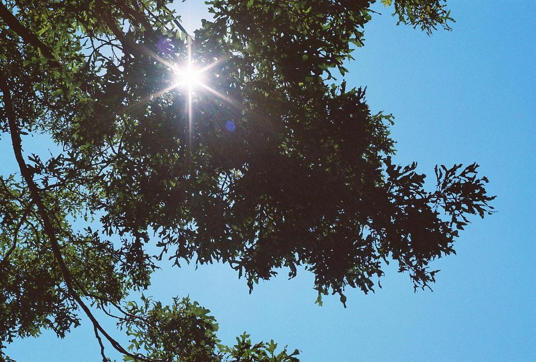 Fh000034_SunShiningThrough by NemoNameless