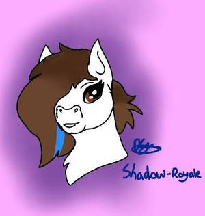 Practice Pony for a Friend