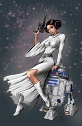 Princess Leia by Dawn McTeigue colored by YamanJazzArt