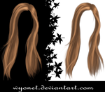 Hair Stock 3