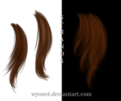 hair strands by Wyonet