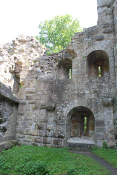 castle ruins Blankenhorn Germany
