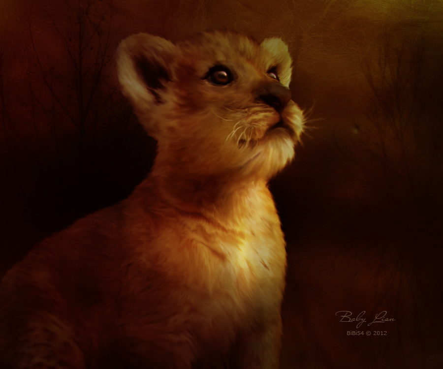 Baby Lion by BiBiARTs