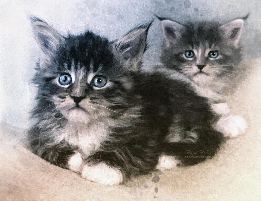 Kitten by BiBiARTs