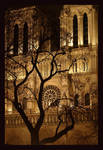 Phantom Cathedral