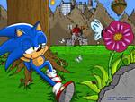 Sonic#11 Set3