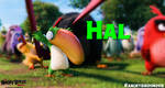 The Angry Birds Movie Hal Wallpaper