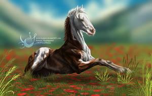 Gypsy Vanner Foal by Loonaris