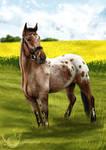 Commission: Horse Fullbody + Speedpaint Video