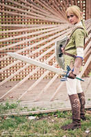 Link Forever by Nadiaxel