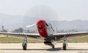 P-51D Mustang Blondie by IntermissionNexus
