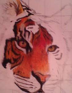 Feral-Tiger's Profile Picture