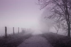 Fog by KB-Fotografie