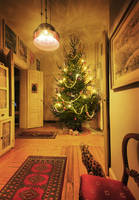Christmas tree 2007 by carlzon