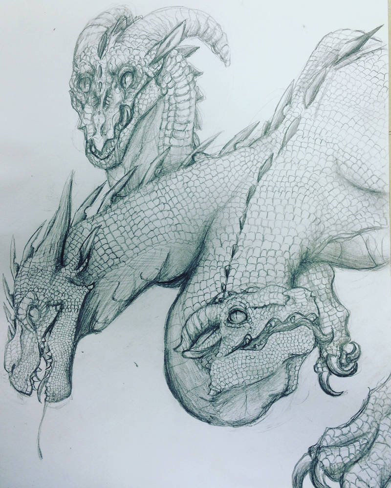 3 Headed Dragon By Silverflare010 On Deviantart