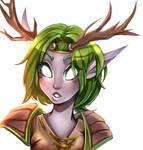 Spirit elf