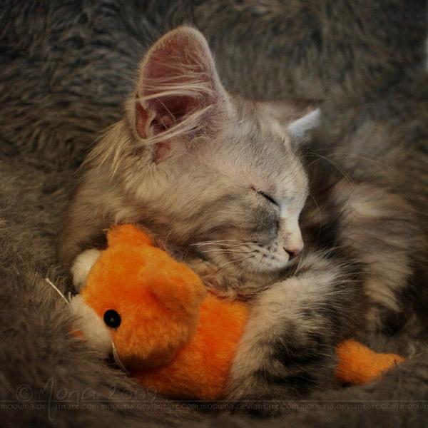 Sleeping beauty by Moowna
