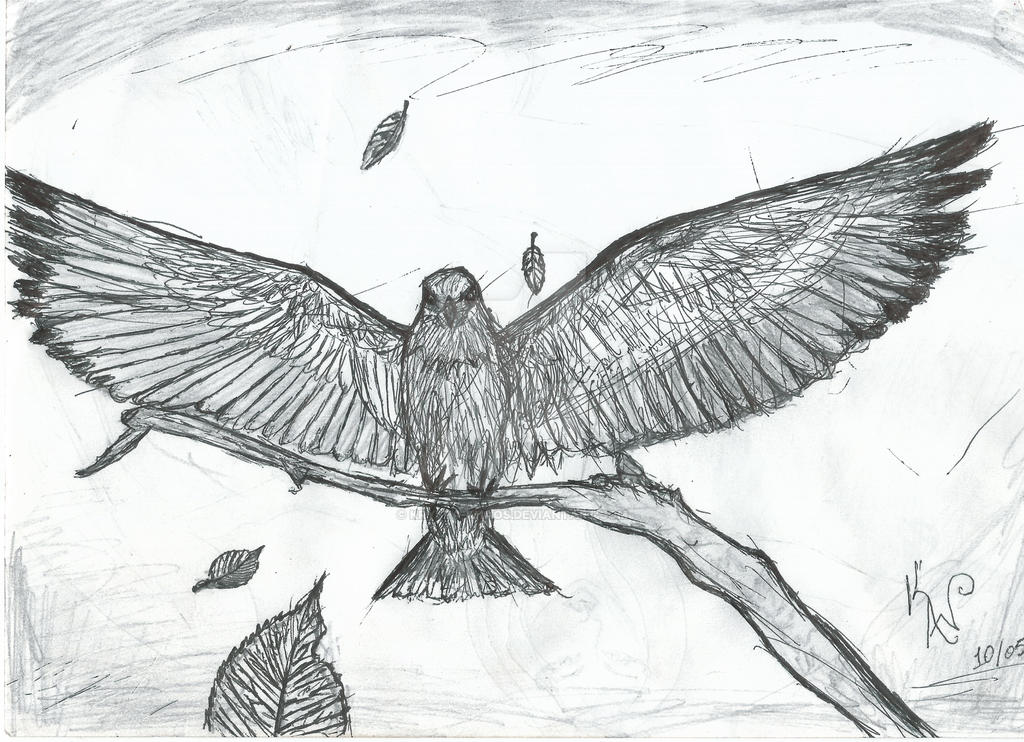 Bird On A Branch by Krysta-Khaos