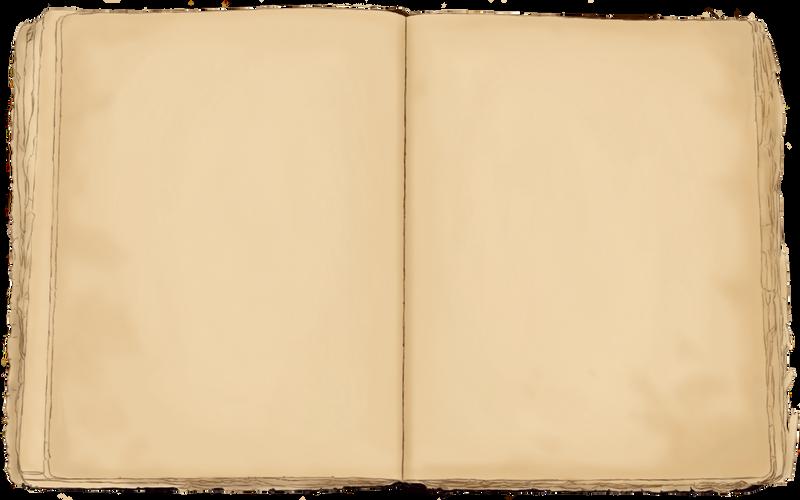 Blank Vintage Book