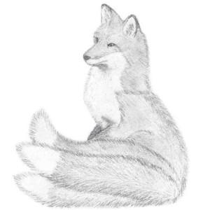 Vixen525's Profile Picture