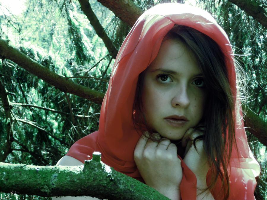 A Tale of Red Riding Hood II by 4Gemsbok