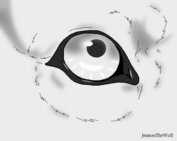 Line Drawing Eye : Wolf eye lineart with shading by jeamesero on deviantart