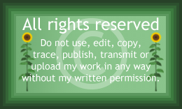 All rights reserved image page decoration