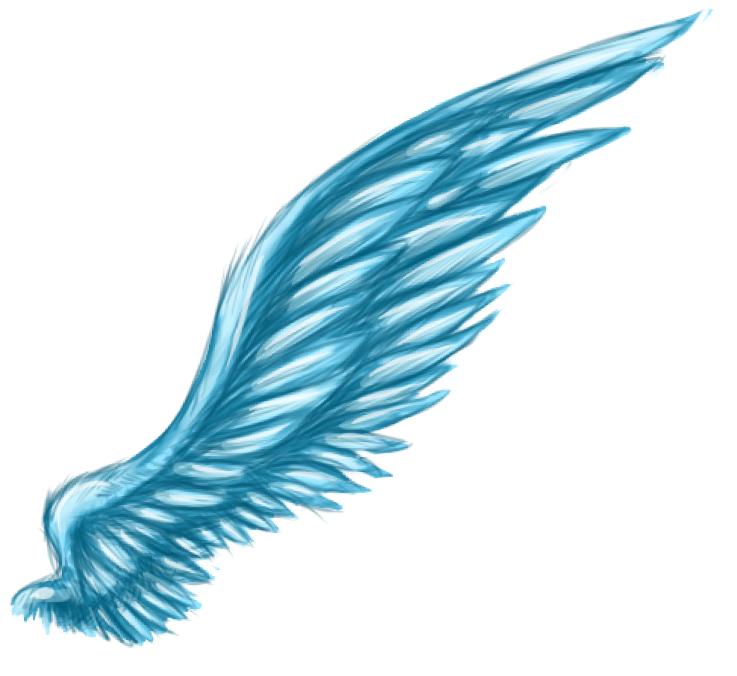 Blue Wings 80