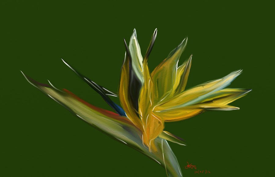 Bird Of Paradise Flower by TemperTempest