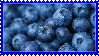 Blueberries Stamp by Weapons-Expert-Cool