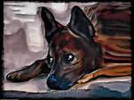Digital Painting: Loyalty Incarnate