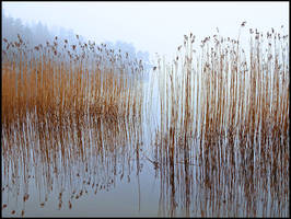 Stillness on sea by eswendel