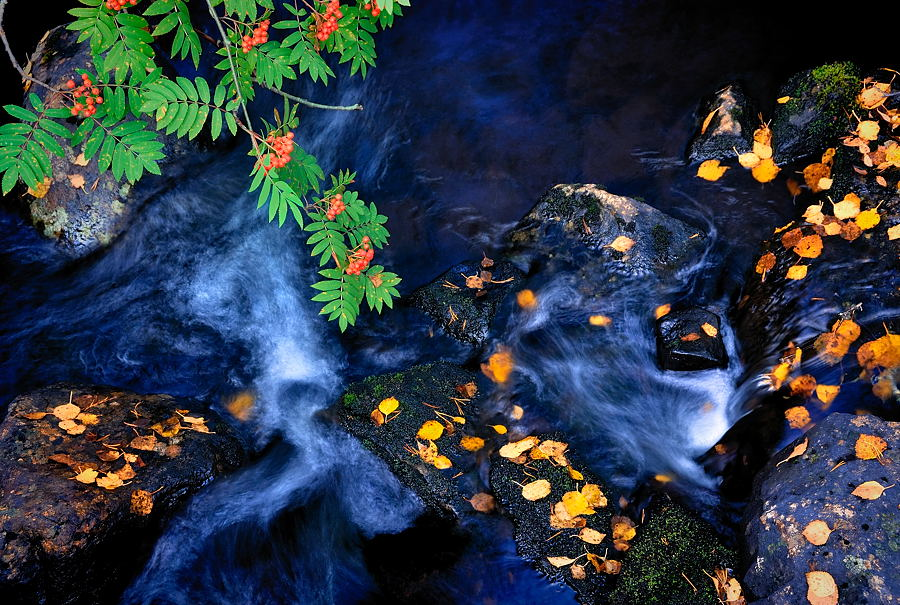 Fall of creek by eswendel