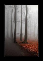 A misty hideaway