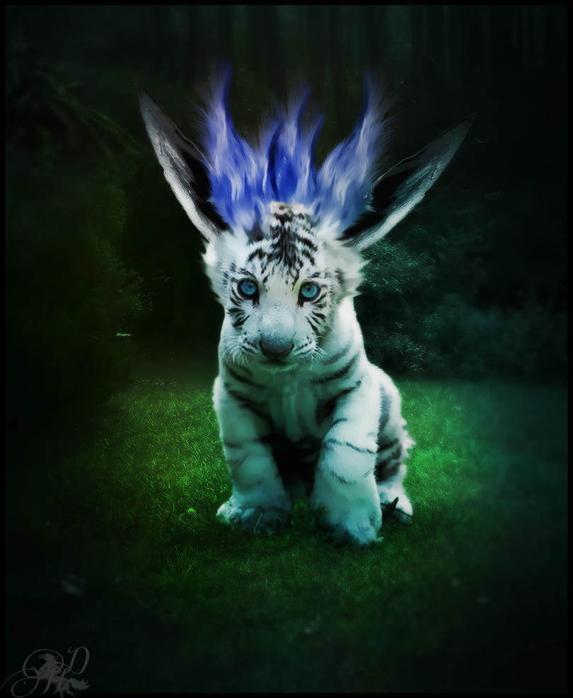 Baby Cougar by DarkHorses90 on DeviantArt
