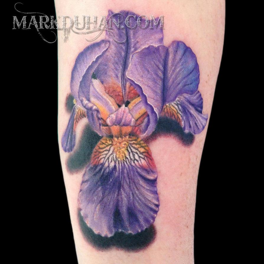 Bearded iris by amduhan on deviantart bearded iris by amduhan izmirmasajfo