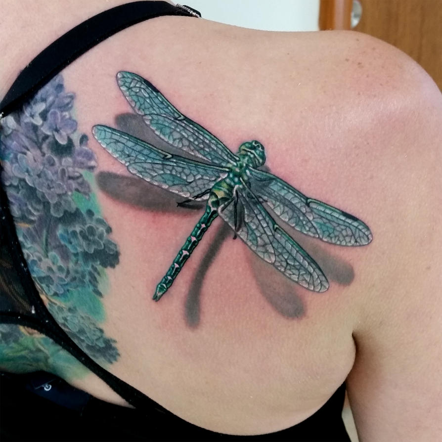 Dragonfly1 by amduhan