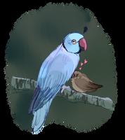 Love birds by Abbadoo02
