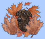 Yoshi in Fall Leaves