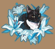 Bean with Blue Heart Lilies