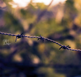 Secured Area by Hapachai