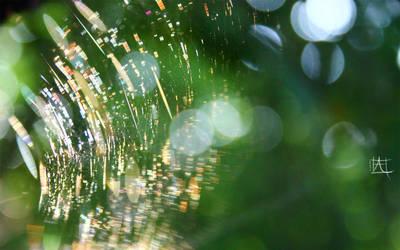 Arachnea by Hapachai