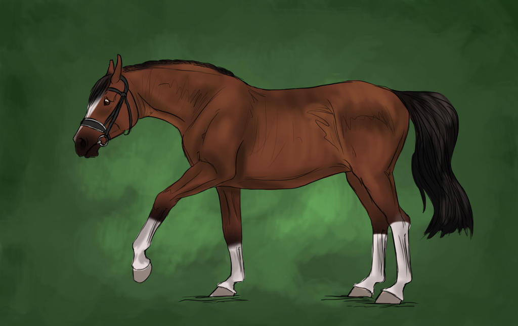 WWH Cherry by OakBrookeStables
