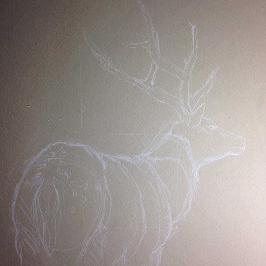 Deer sketch by OakBrookeStables