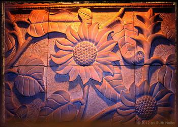 Sun Flower for new hope