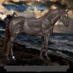 Rainy Lake, Sport Horse Gelding