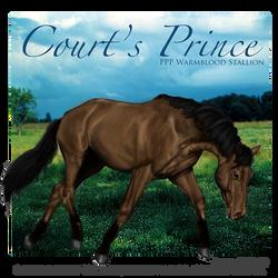 Courts Prince, WB Stallion