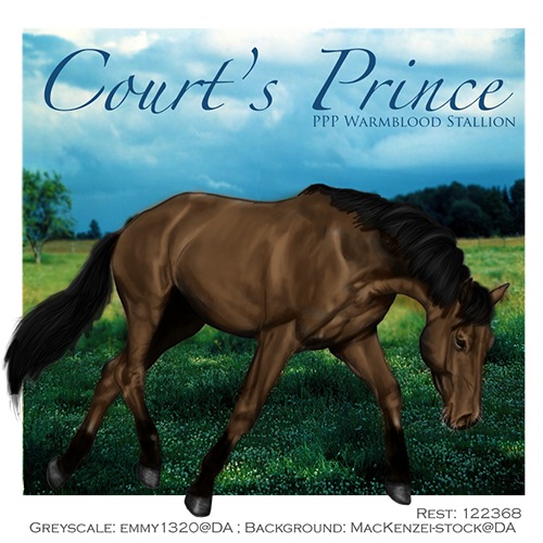 Courts Prince, WB Stallion