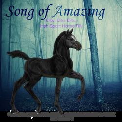 Song of Amazing, Irish Sport Horse Filly