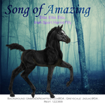 Song of Amazing, Irish Sport Horse Filly